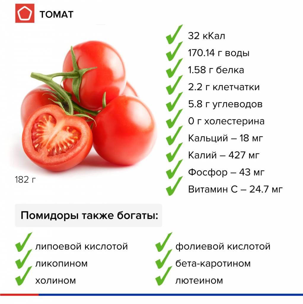 инфографика-томат.jpg
