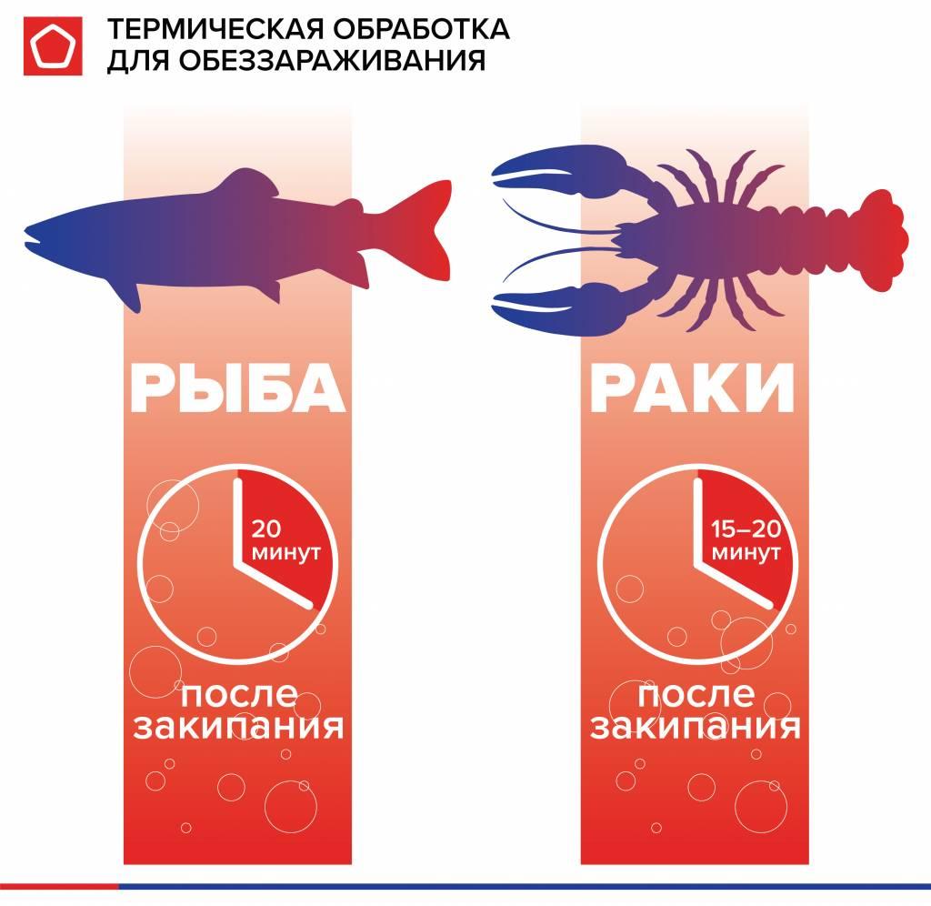 RK fih parasites-termo.jpg