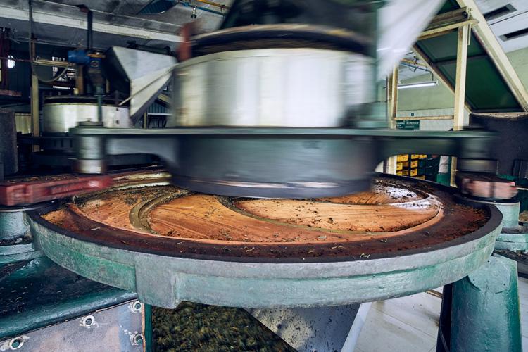 производство-чая2.jpg